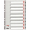 Kép 1/8 - Regiszter, műanyag, A4, 1-20, ESSELTE, szürke