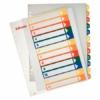 Kép 1/8 - Regiszter, műanyag, A4 Maxi, 1-12, nyomtatható, ESSELTE, áttetsző